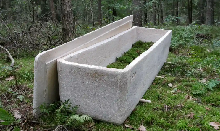 Screenshot_2020-09-15 First funeral held using 'living coffin' made of mushroom fibre