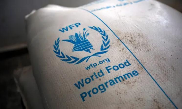 Screenshot_2020-10-09 UN's World Food Programme wins Nobel peace prize