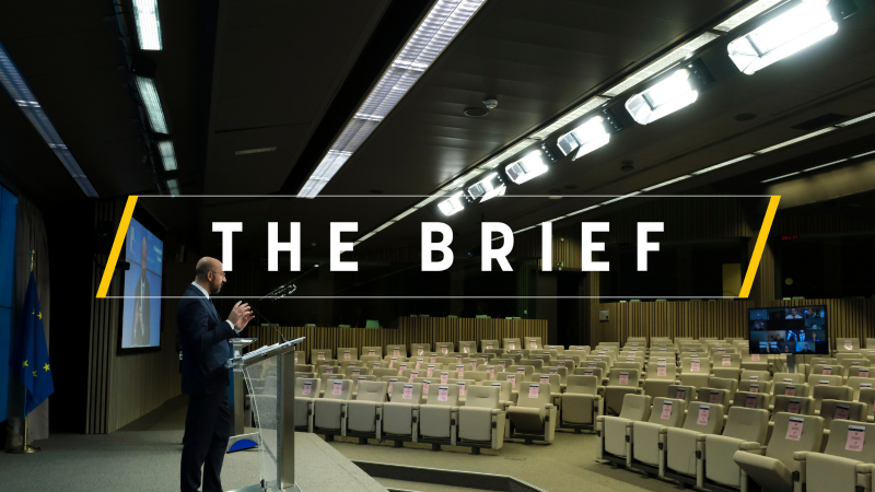The-Brief-Article-template-please-duplicate-5-800×450